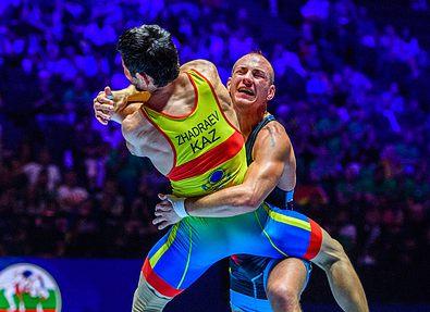 Чемпионат мира по борьбе