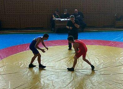 Областной чемпионат по вольной борьбе
