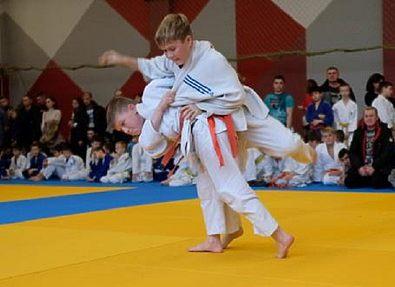 В Николаевке состоялся Всеукраинский турнир по дзюдо