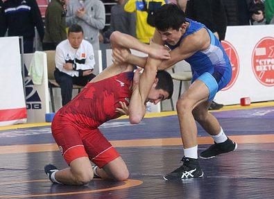 14-й международный турнир по греко-римской борьбе