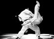 Martial Arts Bo Staff Weapons Kata Ray Rice Black Belt 1970's Retro Film